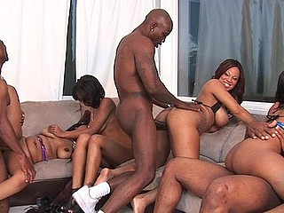 Aryana Adin, Brooklyn Carter, Divine, Evanni Solei, Janae Foxx, Luxury Play, Natasha Dulce, and Porsha Carrera hold a wild and wanton fuckfest of longing... and large bazookas and soft skin and dripping soaked snatches.  This is a hawt scene featuring the almost all gorgeous black hotties around getting slammed and drenched.