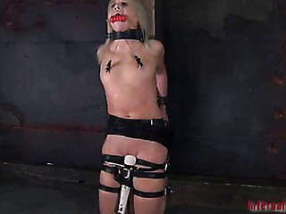 Star showed up in our dungeon with this assumption that suffering would earn will not hear of something. This pet thought the submission would be will not hear of choice.