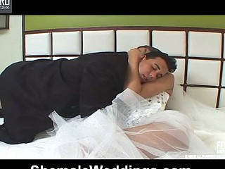 Attractive shemale wife and lewd husband playing ribald fucking games in bed
